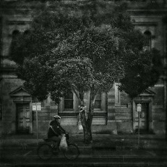 Every Moment Seems Miraculous (michelle-robinson.com) Tags: blackandwhite bw tree art monochrome architecture photomanipulation vintage photography blackwhite artist cyclist australia 11 illustrative dreaming textures smartphone squareformat adelaide southaustralia atmospheric visualart fineartphotography artistry blackwhitephotography artphotography photoapps antiquelook visualartist mobilephotography phoneography michellerobinson flickrelite iphonephoto shotwithiphone iphoneography iphonephotoapps shotoniphone southaustralianarchitecture 4tografie procameraapp instagram smartphonephotography snapseed appstacking textureblendphotography michmutters madeonipad mexturesapp stackablesapp shotoniphone6plus shotwithiphone6plus madewithipad