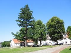Kloster Lehnin (conticium) Tags: potsdam brandenburg kloster lehnin klosterlehnin zisterzienserabtei hochmittelalter klosterkirchestmarien luisehenriettenstift evangelischenkirche