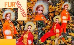 AUTUMN LEAVES (ModBarbieLover) Tags: autumn barbie talking mod 1970 doll leaves fur fashion