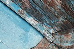 Macro Texture Study 4 (katie47n) Tags: macro boat hull peelingpaint rust texture detail abstract wood old wickford ri color weathered worn shipyard boatyard