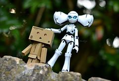 Friends (Mientsje) Tags: cute toy toys doll dolls disney danbo drossel figma dunboard