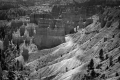 A Ribbon of Time: Bryce Canyon National Park (Life_After_Death - Shannon Day) Tags: park blackandwhite bw white mountain black mountains monochrome canon landscape outdoors photography eos mono utah blackwhite nationalpark desert time outdoor stripes stripe canyon erosion chrome national layer hoodoo bryce dslr canondslr canoneos canyons striped hoodoos striated erode striation layered brycecanyonnationalpark lifeafterdeath 50d shannonday canoneos50d eosdslr canoneos50ddslr lifeafterdeathstudios lifeafterdeathphotography shannondayphotography shannondaylifeafterdeath lifeafterdeathstudiosartandphotography shannondayartandphotography