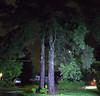 IMG_9335.CR2 (jalexartis) Tags: lighting rain night yard photography photo contest frontyard challenge facebook photochallenge photoadaychallenge junechallenge jalexartis junephotochallenge