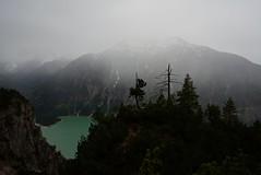 A Breeze of Eternaty (bandit4czm) Tags: heiterwang heiterwangersee tauern regen rain baum tree lake mountain lech lechweg lechtal tirol ferienregion reutte ausserfern ansicht