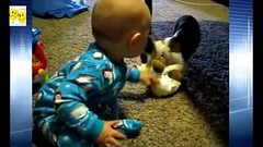 Funny Dogs Stealing Toys From Babies Compilation 2015 HD (gudpay) Tags: from dogs toys funny babies hd stealing compilation 2015 mytamiltv