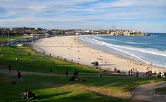 Bondi_Winter_2016 (bobarcpics) Tags: bondibeach sydney australianbeach sand sea green grass people headland waves outdoor