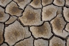 Pixelated playa (D. Inscho) Tags: usa mud playa cracked alvorddesert easternoregon