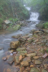 Parque natural de #Gorbeia #Orozko #DePaseoConLarri #Flickr -109 (Jose Asensio Larrinaga (Larri) Larri1276) Tags: 2016 parquenatural gorbeia naturaleza bizkaia orozko euskalherria basquecountry