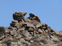 California Route 74 (army.arch) Tags: california road ca mountains highway rocks palmsprings 74 palmdesert sanjacinto route74