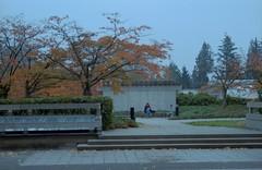 East of the Academic Quadrangle (jvde) Tags: 3570mmf3345nikkor coolscan film fujicolor nikonfe burnaby sfu gimp
