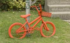 Renovation (rumimume) Tags: orange bike canon spring pic niagara 2016 t2i rumimume
