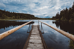 today this is all I need (philipp_mitterlehner) Tags: lake nature reflections landscape outside austria view hiking exploring adventure lookslikefilm d810 tannermoor