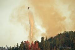 Pinpoint (trifeman) Tags: 2016 california summer canon 7d canon7dmarkii july enf eldorado placer eldoradonationalforest trailheadfire trailhead helicopter aeu neu tamron tamron150600mm n45917 61271 s61v1 sikorsky sillerhelicoptersinc