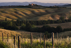 ... (https://www.facebook.com/asya.misheva.photography) Tags: green landscape outdoor vineyards tuscany vilage omot