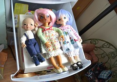 getting dressed for a dolly meetup in madison on saturday (Jemjoop Blythe/BJD) Tags: flora mod dolls dress ns leah tan bjd toffee fairyland sets ino dairyland ltf icantdance littlefee irrealdoll