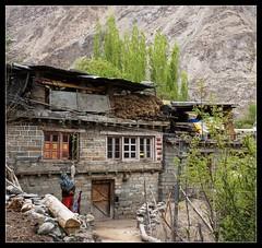 Turtuk (Indianature26) Tags: india mountains april himalayas jk ladakh balti baltistan juley 2013 turtuk indianature julley turtuktyakshi baltivillage ethnicbalti