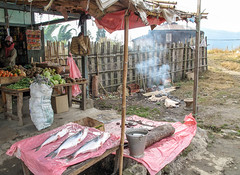 Lower Dibang Valley, Anini #3 (foto_morgana) Tags: india fish shop asia streetscene streetview arunachalpradesh