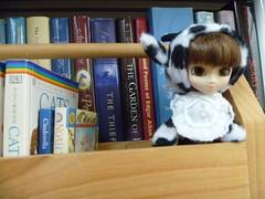P1000827 (Toni226) Tags: doll groove pullip littlepullip junplanning calfy