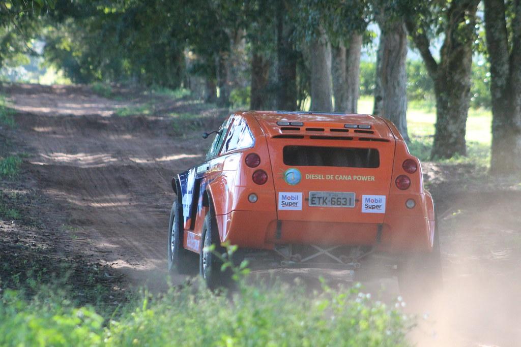 Rallye t-rex