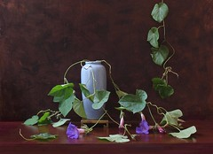 Rhythms of Nature. (Esther Spektor - Thanks for 7 millions views..) Tags: flowers blue summer stilllife brown color reflection green art texture leaves metal br