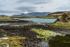 Isle of Canna - Image 158 (www.bazpics.com) Tags: ocean trip bridge family sea vacation holiday beach nature water beauty weather ferry port ties landscape bay coast scotland dock sand scenery natural tide low small may scottish bank location inner coastal ancestor sail remote isle isles connection canna hebrides nts sanday nationaltrustforscotland 2013 backtomyroots johnlornecampbell barryoneilphotography cannahouse