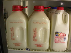 Old Almo Creamery Milk (jimmywayne) Tags: glass milk idaho generalstore gravel creamery almo cassiacounty oldalmo