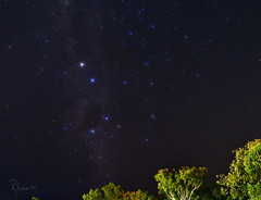 Southern Cross Above the Treetops_1RR2303 (RRobertsphoto) Tags: stars australia southerncross astronomy nightsky constellation crux northernterritory astrometrydotnet:status=solved astrometrydotnet:id=nova232775