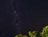 Southern Cross Above the Treetops_1RR2303 (RRobertsphoto) Tags: stars australia southerncross astronomy nightsky constellation crux northernterritory astrometrydotnet:status=solved astrometrydotnet:id=nova232775