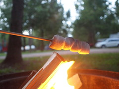 Vegan Marshmallows (Raccoon Photo) Tags: old camping school ohio camp cats bus abandoned cat fire vegan cabin midwest flames shed greatlakes campfire northern oldtruck goodeats greatlake noms cabins sandusky sanduskyohio veganmarshmallows roastingmarshmallows cabininthewoods oldschoolbus vegantreats cabincamping northernohio beerbottleopener greatlakesbeer marshmallowscampfire campsandusky campingfoods veganmarshmallowtime marshmallowscamping stacksonstacksofmarshmallows campingtreats marshmallowsonstick camptreats marshmallowsroasing