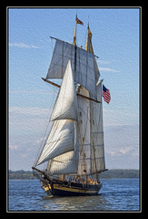 Pride of Baltimore II (Deb Felmey) Tags: race boat sail tallship schooner chesapeake