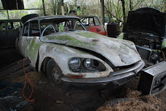 Citroen DS (Sam Tait) Tags: old classic car dunp junk yard scrap retro waste wasted citroen ds white abandoned rare cool vintage farm barn find tin rotten