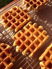 Wafels in de zon