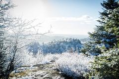 View From St. Regis Mountain (ssgmacdawg12345) Tags: winter mountain snow college st paul nikon shane hiking adirondacks smiths regis garlock d3100