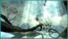 Clairvoyance (1) (Tim Deschanel) Tags: life winter snow landscape happy tim mood hiver sl second neige paysage deschanel happymood