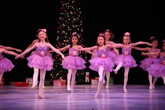 IMG_0435 (nda_photographer) Tags: boy ballet girl dance concert babies contemporary character jazz newcastledanceacademy