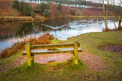 Memorial Bench, Peaceful Reflection (Boxing Day) (Mark Edwards2008) Tags: nov sep feb sept 18022012 18112000 28051920 12091931