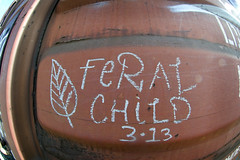 Feral Child (AZbencher) Tags: railroad train graffiti freight moniker
