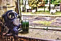 Fresh air (Ian Da Silva Photography) Tags: uk canon fun war day tank sheep kitlens gasmask base raf cambs hrd 600d upwood