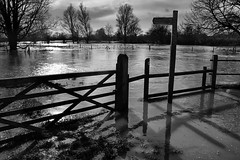 Day #2231 (cazphoto.co.uk) Tags: trees wet water monochrome fence mono gate fields footpath stile floods floodwater project365 riverchelmer 080214 canoneos100d broomfieldmill canon1855mmeff3556isstm beyond2192