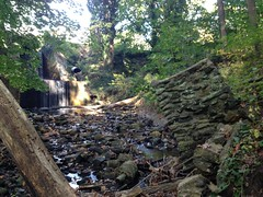 "Broomall's Dam waterfall & remains of old footbridge • <a style=""font-size:0.8em;"" href=""http://www.flickr.com/photos/92887964@N02/12599951604/"" target=""_blank"">View on Flickr</a>"