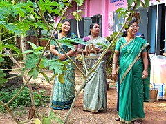 Teachers in a school in Kovalam, India (fam_nordstrom) Tags: india kerala indien 2014 bahrat