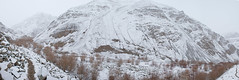 Torbung_Panorama (dickysingh) Tags: india mountains nature landscape outdoor himalayas winters ladakh panaroma