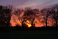 Caistor Sunset (BiggestWoo) Tags: trees sunset sky evening dusk sony lincolnshire caistor wolds lincs a37