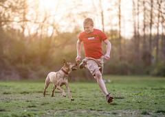 Runners (Darren LoPrinzi) Tags: park light sunset dog pet sun playing cute canon puppy fun evening mutt mix play dusk shepherd running run terrier canon5d ridgeback roxy germanshepherd rhodesianridgeback rhodesian manchesterterrier wooja