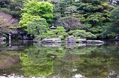 Reflection Japanese Garden (pim van den heuvel) Tags: old bridge trees lake reflection green classic water japan garden island japanese spring kyoto meditate tag den relaxing calm pim add  classical serene tuin brug van typical bushes oude heuvel japanse 2014  klassieke sereen mediteren tyische