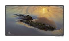 Sunrise reflections - Warriewood (Seany99) Tags: reflection rock sunrise sand sydney australia nsw warriewood sydneysnorthernbeaches
