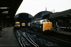Class 55 no. 55015 TULYAR @ Newcastle, c. 1980 [slide 8037] (graeme9022) Tags: city uk blue england station electric speed train grey coast ic high br mechanical diesel 5 main north transport central rail line east coco transportation type multiple british locomotive express passenger 1980s railways intercity inter unit 125 livery mainline deltic ic125