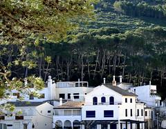 SA TUNA (beagle34) Tags: paisaje catalunya costabrava begur paisatge 160 satuna baixempordà panasonicfz1000