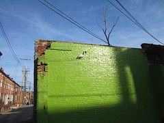 green wall with a white flamingo, alley view (Zombie37) Tags: old blue winter shadow sky sun tree brick green broken strange lines wall found funny shiny shadows shine random painted flamingo baltimore plastic odd wires mounted perched outofplace