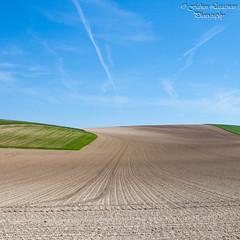 Des lignes et des courbes (Fabien Legagneur) Tags: canon landscape paysage extrieur champ plaine capblancnez pasdecalais ctedopale eos500d